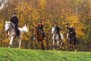 Konie, rowery, kajaki