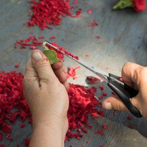 Blumenbilder von Italienischen Künstlern in Uniejow