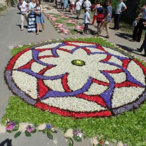 Inhabitants of Spycimierz make flower carpets from petals