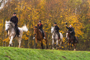 Horse riding, cycling, kayaking