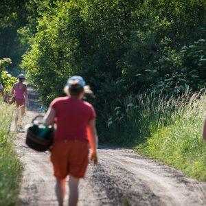 Grupa osób z koszami idzie polna drogą